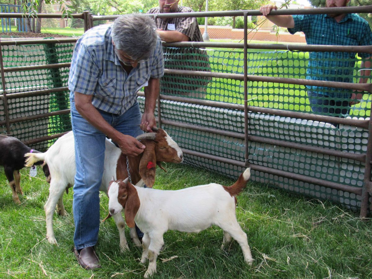 Goat Producers Attend 1st Annual Production Workshop