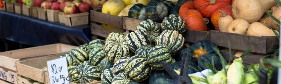 Marketing Resources for Local Food Producers