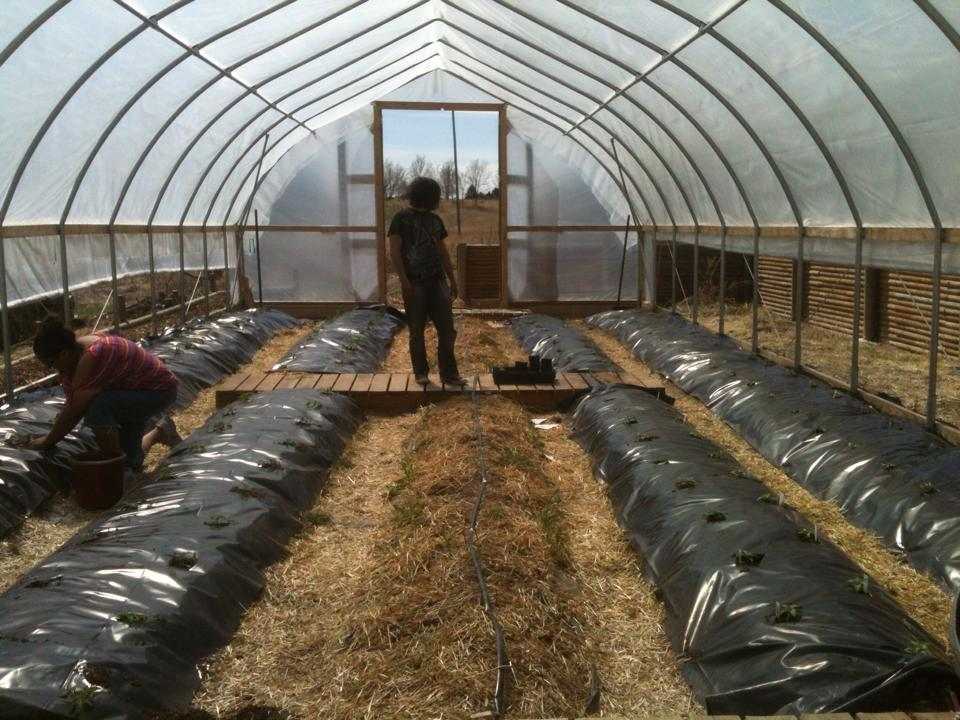 Geothermal Greenhouse & High Tunnels Tour Sept. 7 in Mission