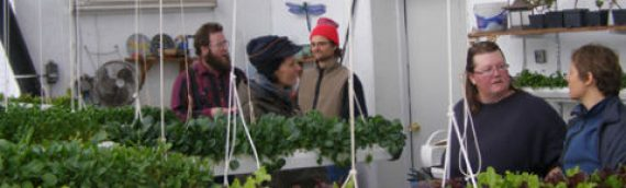 S.D. Local Foods Conference to Feature Winter Greenhouses