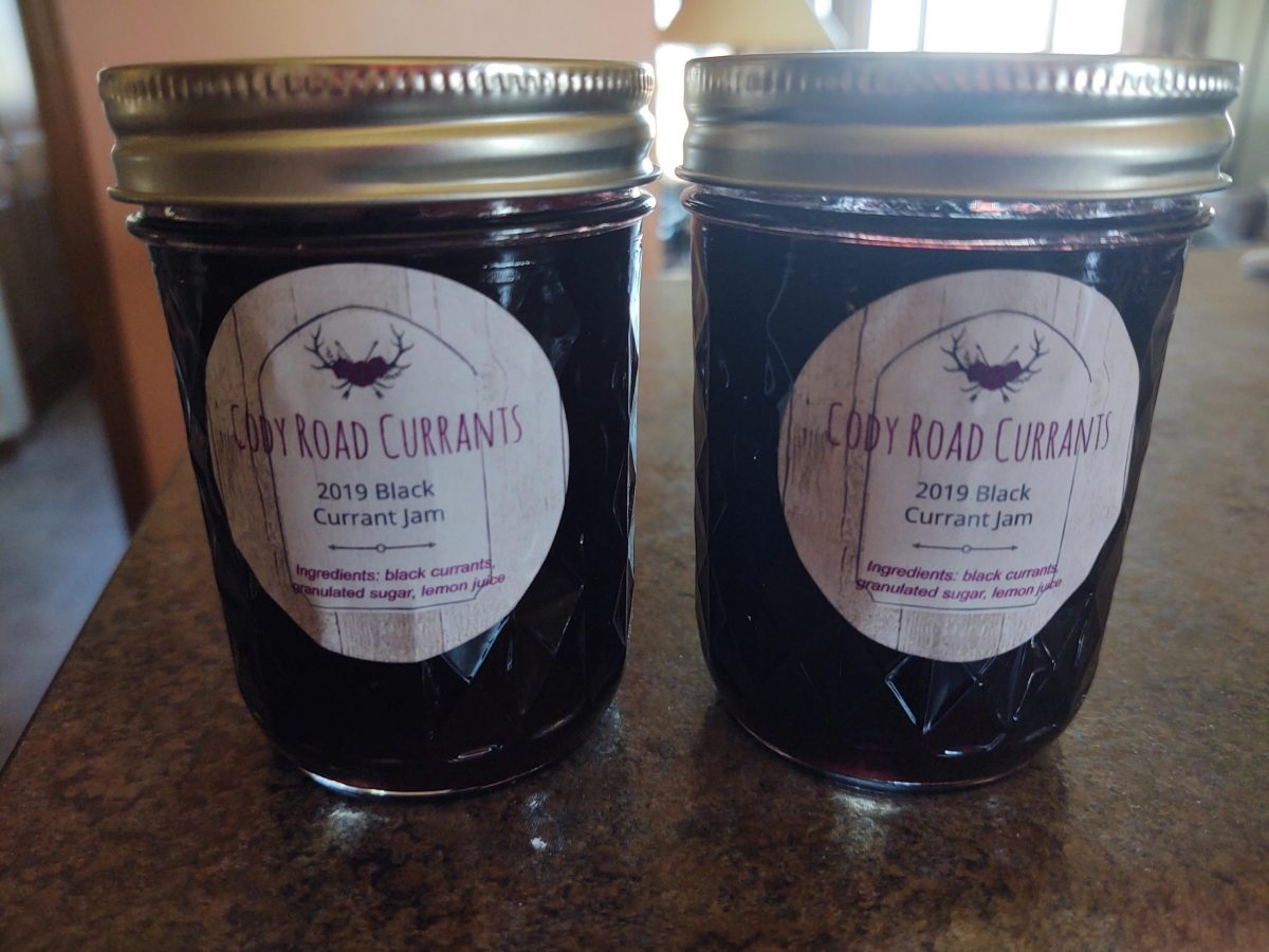 Producer Feature: Cody Road Black Currants