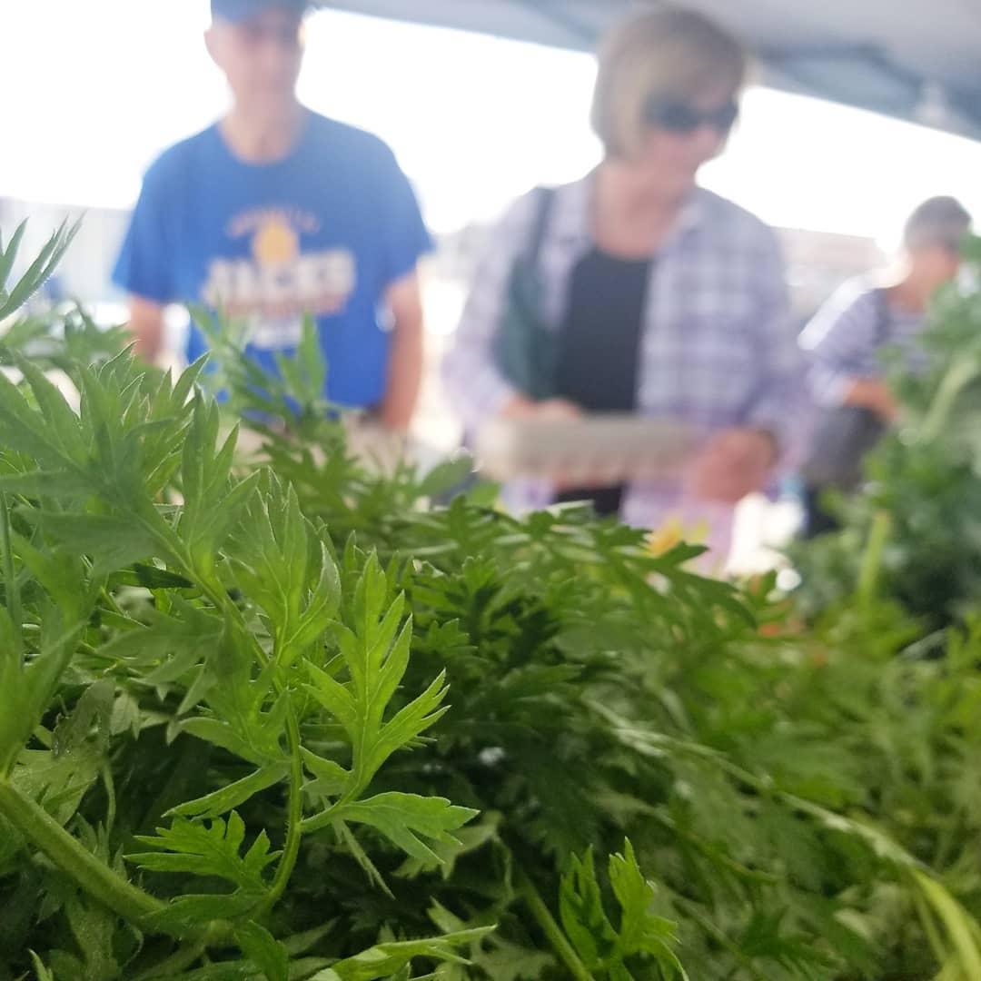 Celebrate National Farmers Market Week Aug 2-8