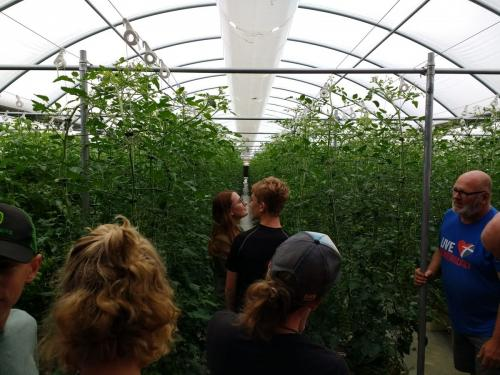 SDSPA Tour 2019- Happy Hydros, Hydroponic Tomato Production.
