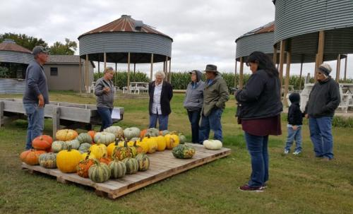 Guests can choose to pick their own pumpkin from the fields or select pre-picked pumpkins, gourds, specialty pumpkins, Indian corn, straw bales & corn shocks at Big Stone Pumpkin Patch.