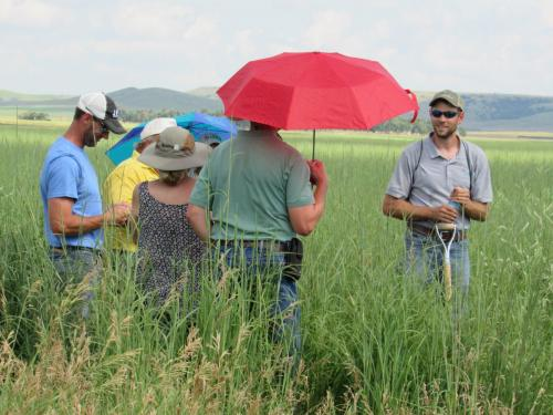 SDSPA Tour 2019- Josh Lefers, Audubon Dakota, shares info about importance of organic matter in soils.