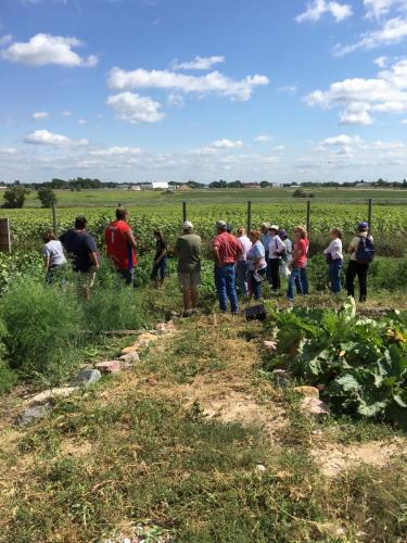Tour of REDCO's 1-acre  Community Garden- SDSPA Tour Sept. 7, 2019.